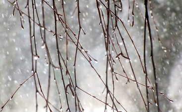 Дожди с мокрым снегом не хотят покидать Украину