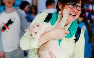 Анна Жижа дождалась своего кота