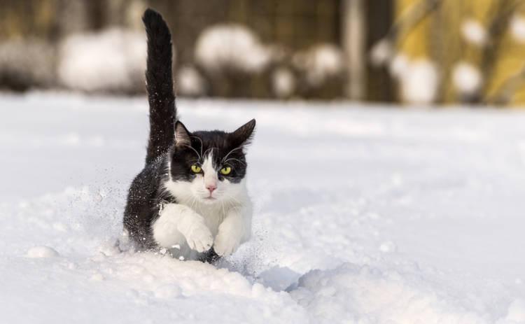 В Украину возвращаются холода