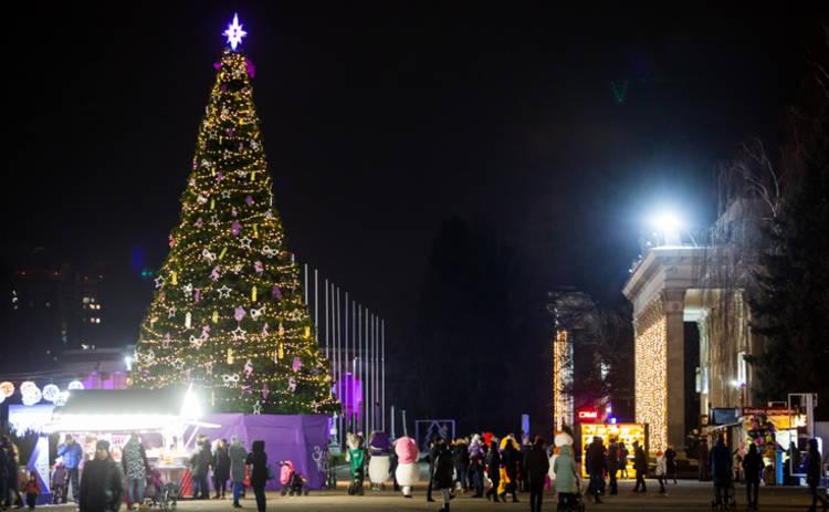 Киевский ВДНХ стал самым популярным парком сезона