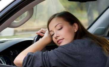 Как не заснуть за рулем: 6 действенных способов