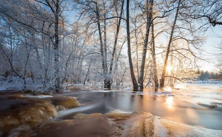 Сегодня в Украине будет по-весеннему тепло, но мокро