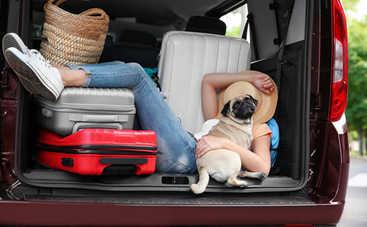 Как с комфортом выспаться в машине: 5 простых советов