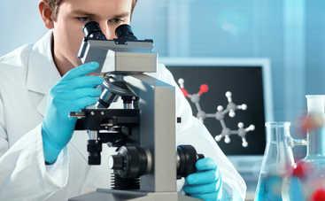 Создано лекарство от рака из дрожжей