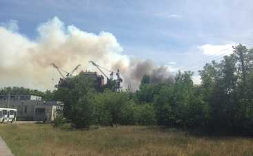 В Чернобыльской зоне загорелся «рыжий лес»