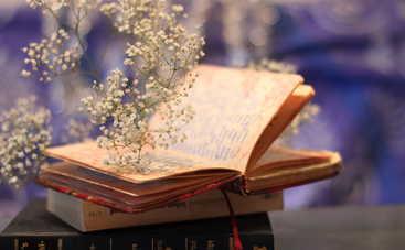 5 книг о нетрадиционной любви