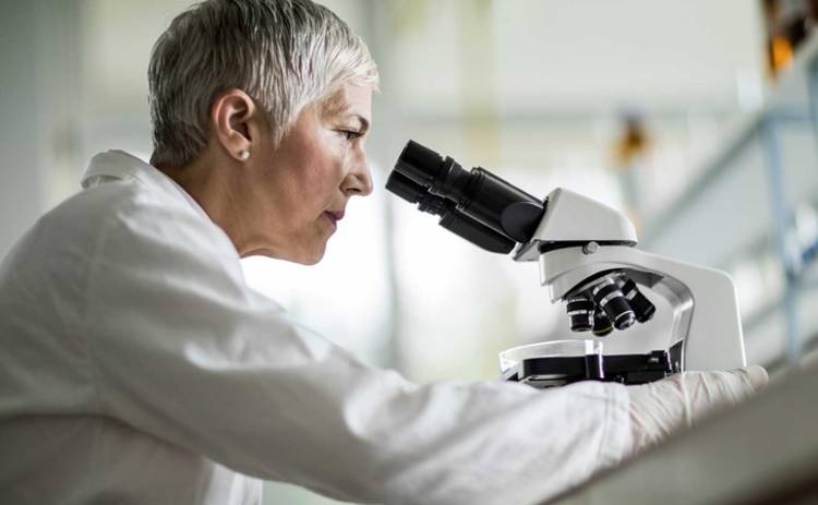 Ученые нашли способ лечения вирусом вместо антибиотиков