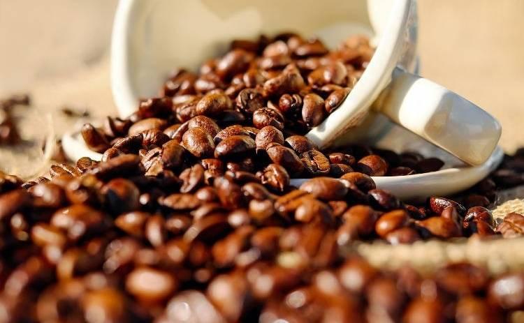 Ученые рассказали, как с помощью кофе можно продлить жизнь