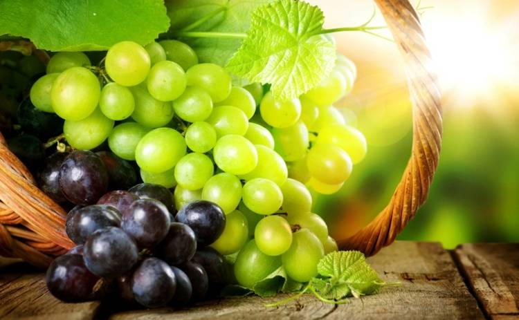 Какие ягоды есть, чтобы защитить легкие от заболеваний