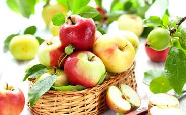Яблочный Спас-2018: красивые поздравления в прозе и стихах