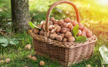 Ореховый Спас-2018: что нельзя делать в этот день
