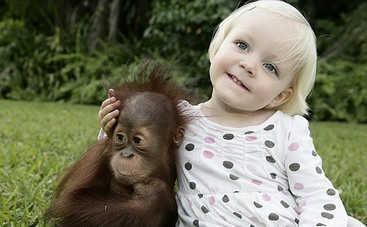 Синхронные движения детей и шимпанзе: в чем кроется секрет