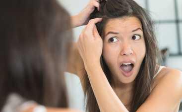 Только присмотритесь! Ученые рассказали, как определить состояние здоровья по волосам
