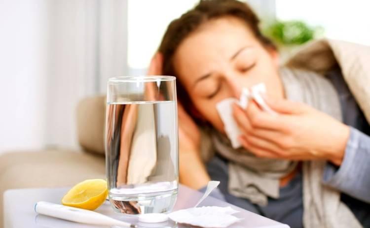 Медики: продукты, которые советуют при простуде, мешают выздороветь