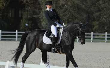 KAMALIYA заняла первое место на Всеукраинских соревнованиях по конному спорту