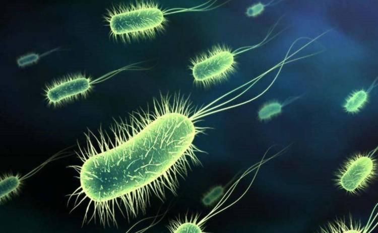 Эпидемия X: врачи рассказали о болезнях, которые будут угрожать человечеству в будущем