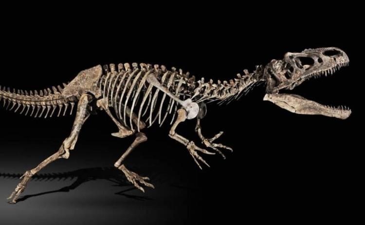 Ученые показали, как на самом деле выглядел самый крупный хищник юрского периода