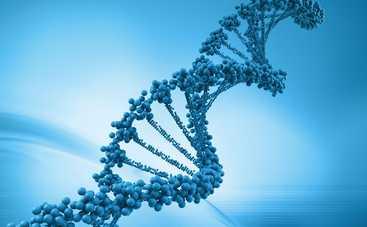 Ученые нашли способ предсказывать продолжительность жизни человека
