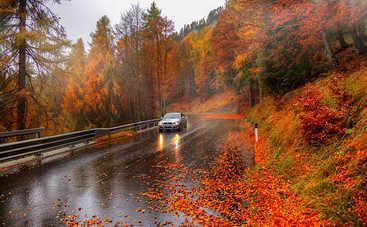 Осенние поездки или предметы, которые понадобятся в машине