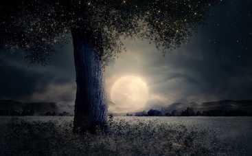 Лунный календарь: прогноз на 12 ноября