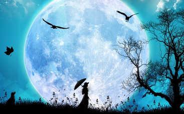 Лунный календарь: как провести 24 ноября