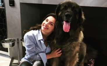 Канал «Украина» покажет премьеру фильма «Год собаки»