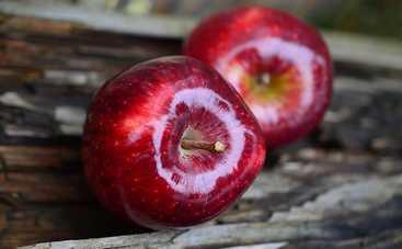 Как яблоки влияют на наш организм: полезные свойства фрукта