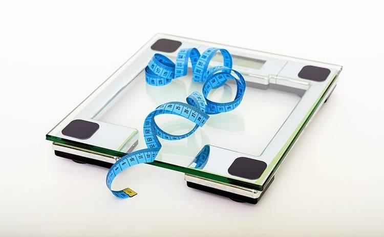 Как ожирение влияет на мозг: исследование ученных