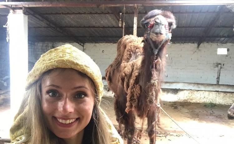 На журналистку Нового канала напал бойцовский верблюд