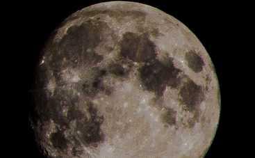 Лунный гороскоп на 25 февраля 2019 года для всех знаков Зодиака