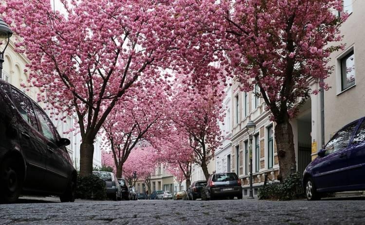 Безопасное вождение весной: советы экспертов