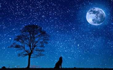 Лунный гороскоп на 13 марта 2019 года для всех знаков Зодиака
