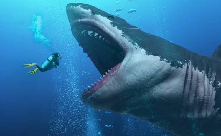 Ученые обнаружили на дне океана самого крупного хищника планеты
