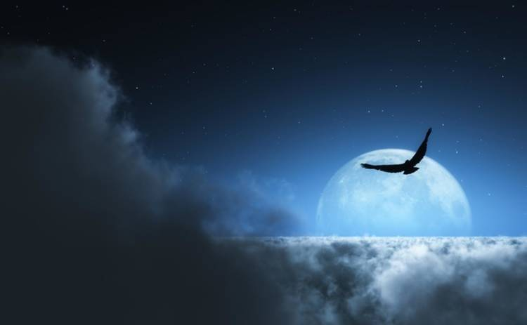Лунный гороскоп на 28 марта 2019 года для всех знаков Зодиака