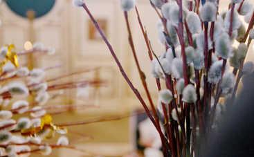 Вербное Воскресенье 2019 — лучшие поздравления в стихах и прозе. Душевные пожелания и СМС