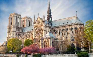 Собор Парижской Богоматери: восставший из пепла