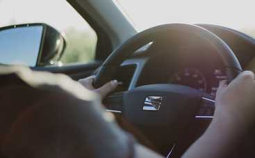 Законопроект, который может освободить от уголовной ответственности водителей