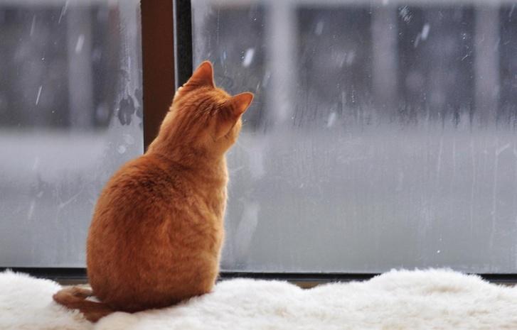 Прогноз погоды на 30 марта 2018 года