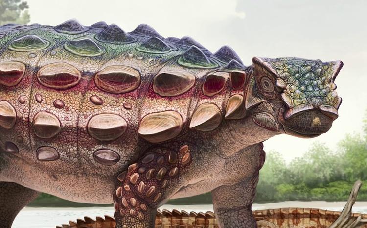 Новый вид динозавра