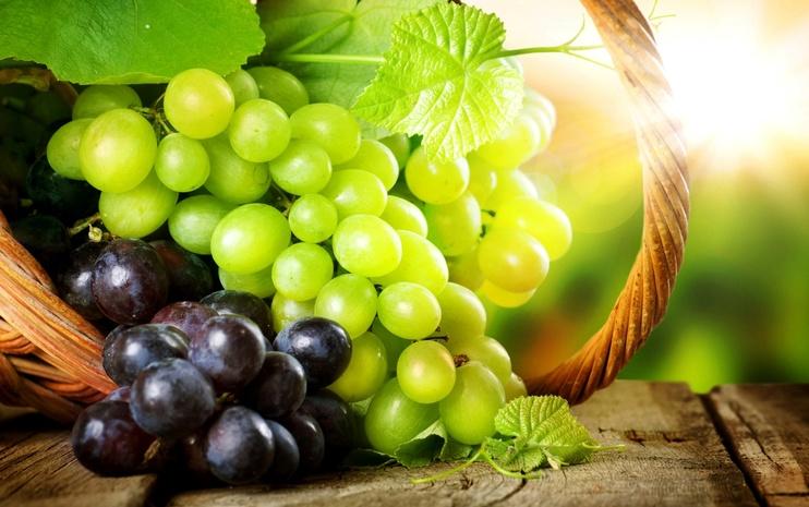 Ученые рассказали, какие ягоды стоит есть, чтобы защитить легкие от заболеваний и повреждений