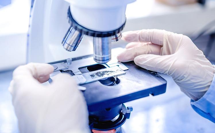 Медики обнаружили у человека новый орган и показали, как он выглядит
