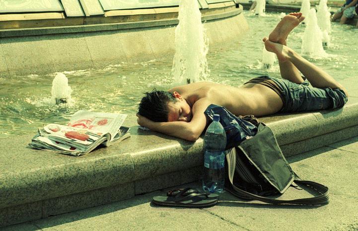 Аномальная жара будет нормой к 2040г.
