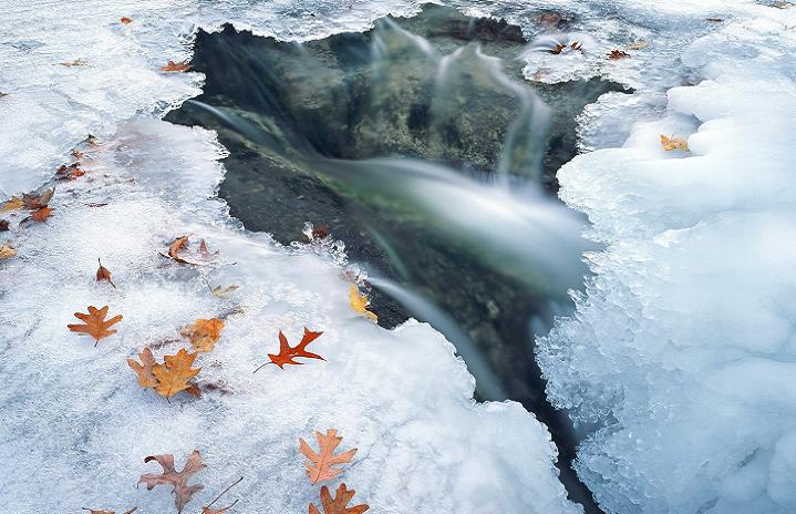 ВУкраинском государстве дожди, температура до +8