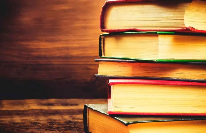 5 книг о сатисфакции