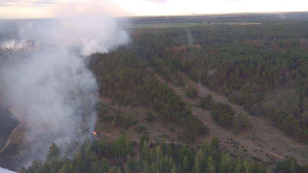 v-chernobylskoy-zone-zagorelsya-ryzhiy-les-2.