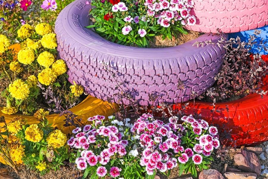 Сажаем цветы в шины 706
