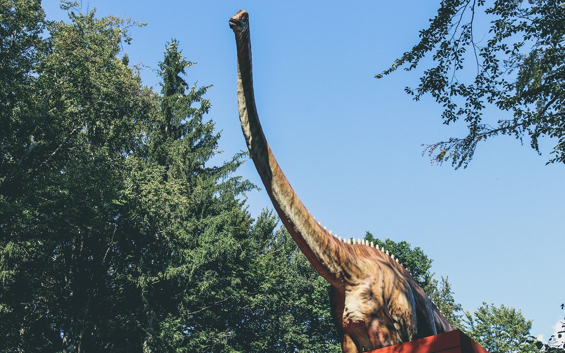 dinosaur-9753