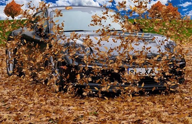 orig-autumn1831192640-1536459196_