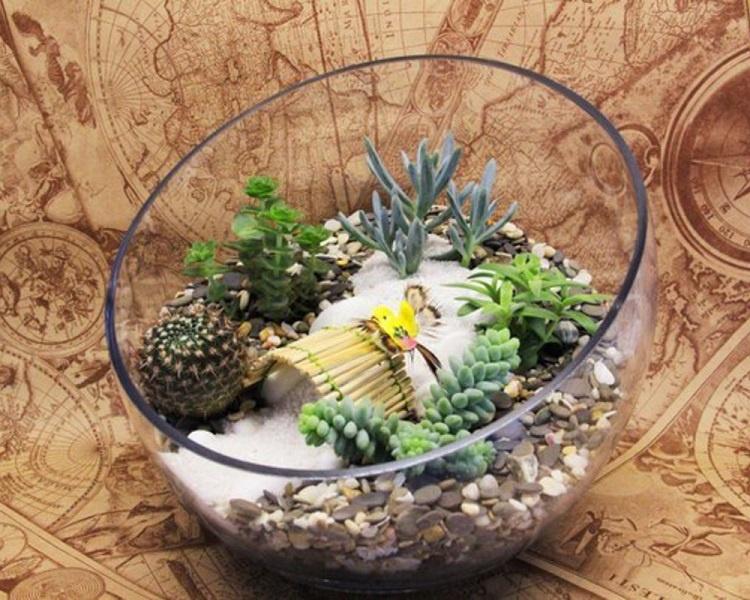 Флорариум из аквариума своими руками 783